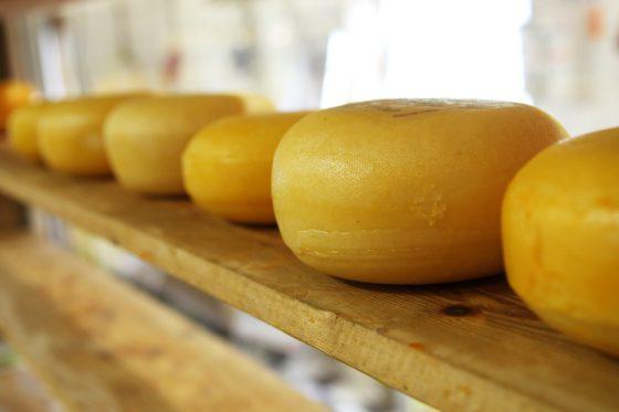 formaggio più antico del mondo